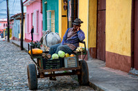Fruit Vendor - Cart
